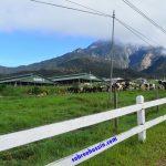 Pengalaman bercuti ke Sabah (1) – Beberapa bulan sebelum berangkat ke Sabah