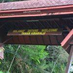 Pengalaman bercuti ke Sabah (7) – Kinabalu Park dan permulaan pendakian ke Gunung Kinabalu