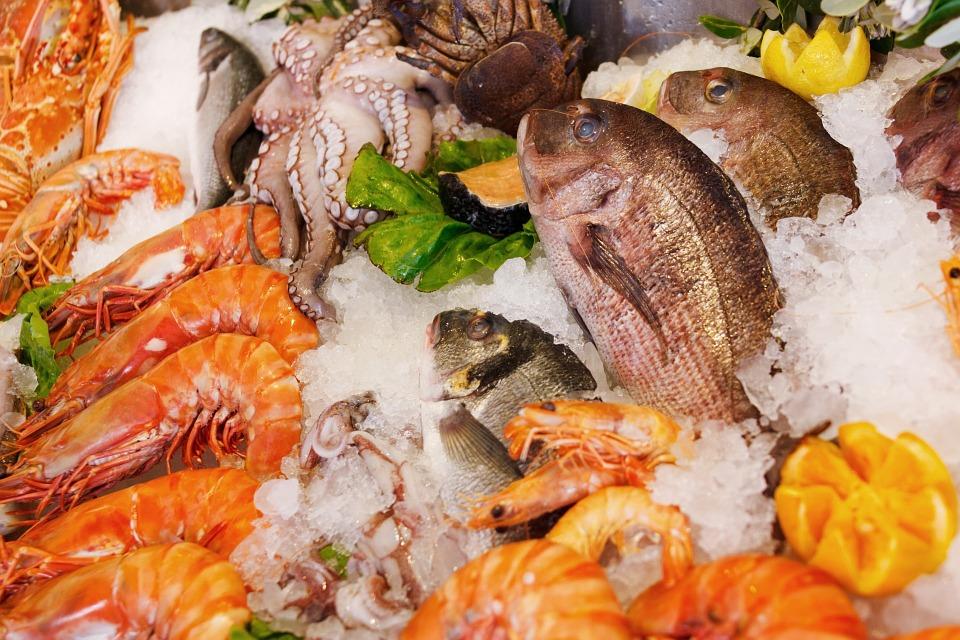 menu-makanan-laut